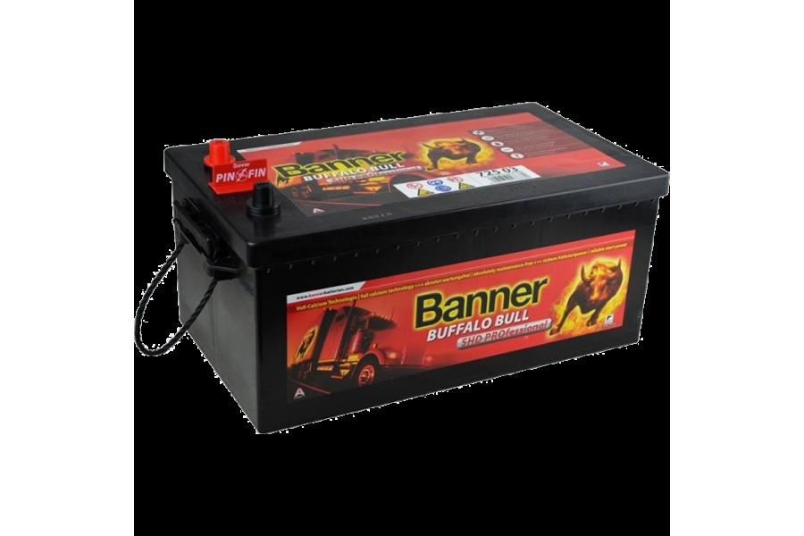Аккумулятор Banner BUFFALO BULL SHD PROFESSIONAL 725 03 225  A/h 1150А R+